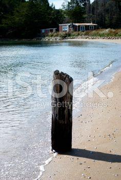 Kiwi Bach on Beach royalty-free stock photo Voss Bottle, Water Bottle, Beach Photos, Kiwi, New Zealand, Remote, Past, Royalty Free Stock Photos, Places