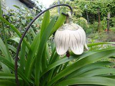 Diese rundliche Glockenblume wurde aus einer Kugel geformt. Dunkelgrün und natürliches Cremeweiß harmonisieren hier miteinander.  Für das Gartenbeet oder in den grünen Blumenkübel als Hinkucker...