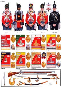 NAP- Britain: British Regimental Schematics from Russia, by (artist unknown). British Army Uniform, British Uniforms, British Soldier, Military Art, Military History, Military Uniforms, Empire, Bataille De Waterloo, Rifles