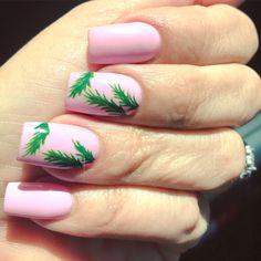 Season of the Palm Tree