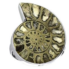 Fossil-Pyrite-Ammonite-925-Sterling-Silver-Ring-Jewelry-s-7-5-SR126621