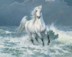 A925726981: Surf Run-арабская лошадь Картина Персис Clayton водосливов