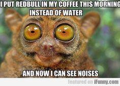 I Put Redbull In My Coffee