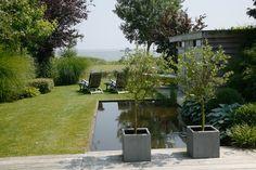 Beste afbeeldingen van tuinen met vijvers water element