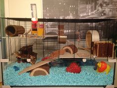 Hamster Live, Hamster Diy Cage, Hamster House, Hamster Stuff, Hamster Ideas, Pet Stuff, Syrian Hamster Cages, Gerbil Cages, Pet Mice