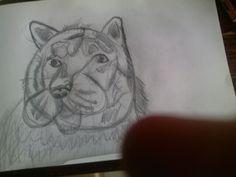 Dit heb ik zelf getekend