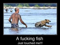 fish. Omfg this was so me at the beach in ft.lauderdale!