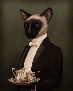 Thomas Siamese Cat Portrait - Downton Abbey