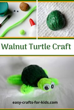 Turtle crafts for kids do not come much better than this walnut turtle #turtlecraft