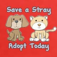 Adopt a dog - don't buy one.  Friends cannot be bought!