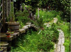 香寺ハーブ・ガーデン(兵庫県姫路市香寺町)