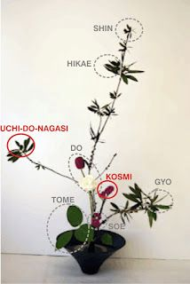 IKEBANA: 10. Introducció estil Shin-so-ka