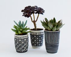 Make succulent pots from oven bake white clay and draw sharpie patterns on! Bloempotten voor binnen - Nieuws - ShowHome.nl