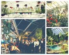 Begonia House is an suitable for and civil unions, formal and and formal Wedding Locations, Wedding Venues, Begonia, Botanical Gardens, Foyer, Catering, Dinners, Weddings, Formal