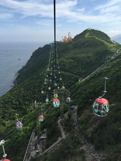 Ocean Park, Hong Kong-zoo, amusement park, great views, etc