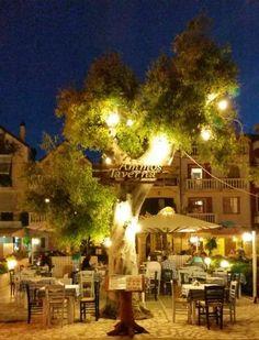Ammos Taverna, Zakynthos Town: Se 716 objektive anmeldelser af Ammos Taverna, som har fået 4,5 af 5 på TripAdvisor og er placeret…