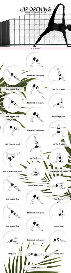 Improve circulation, agility, and flexibility and ease back pain with this hip opening yoga sequence. Move your hip joint through its entire range of motion, improve alignment and release all stress and negativity.