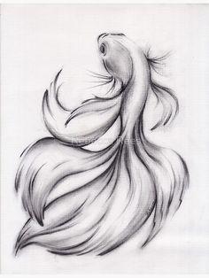 Beta Fish Drawing, Fish Drawings, Pencil Art Drawings, Fish Pencil Drawing, Drawings Of Dragons, Amazing Pencil Drawings, Joker Pencil Drawing, Easy Fish Drawing, Creative Pencil Drawings