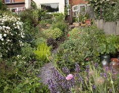 Alys Fowler's garden via www.theguardian.com