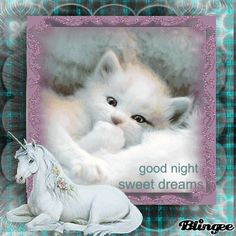 To Cute Night Graphics | ... was submitted by mandeepjul pictures imagesgood night sweet images