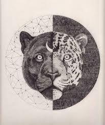 Resultado de imagen de black jaguar