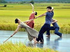 Cloud Gate to give free performances in Taitung, Taipei | Culture | FOCUS TAIWAN - CNA ENGLISH NEWS