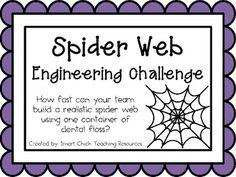 Spider Web: Engineering Challenge Project ~ Great STEM Activity!