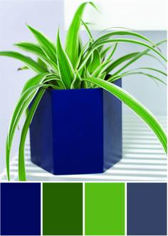 Grünlilie Farbpalette Grün und dunkelblau - Tweed & Greet