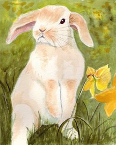 Bunny's Artwork: Floppy Eared Rabbit Watercolor Painting