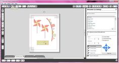 tracing PNG files with Silhouette Studio.  Can use this to print and cut digital files