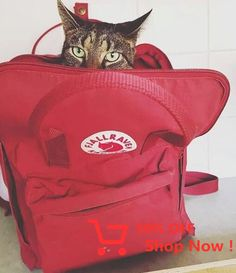 cat and backpack. Mochila Kanken, Kanken Backpack, Look Fashion, Fashion Ideas, Boards, Baby Shower, Backpacks, Corfu Map, Stuff To Buy