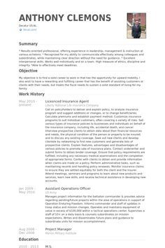 Sample Of Insurance Agent Resume Template  Sample Of Insurance