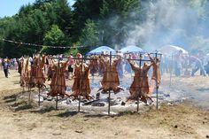 FUN n' Finance: Saturna Island Lamb BBQ Lamb, Islands, Finance, Bbq, Canada, Travel, Barbecue, Viajes, Barbecue Pit