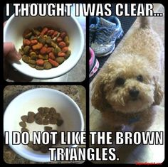 I THOUGHT I WAS CLEAR I DO NOT LIKE THE BROWN TRIANGLES