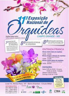 11a Feira Nacional de Orquídeas.