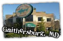 Looking for a great brew pub in Falls Church, Virginia? Enjoy beer from Dogfish Head Brewery, along with delicious items from our wood-fired grill. Dogfish Head, Area Restaurants, Falls Church, Church Crafts, Brew Pub, Beer Brewing, Craft Beer, Brewery, Theatre