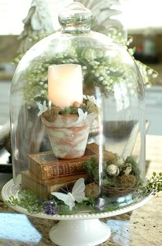 Life in Pictures.: Make an Easy and Inexpensive Easter/Spring Centerpiece Spring Home Decor, Diy Home Decor, Cloche Decor, The Bell Jar, Bell Jars, Deco Floral, Country Farmhouse Decor, Bedroom Country, Farmhouse Lighting