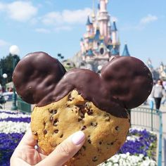 Yes, please. Disney food.