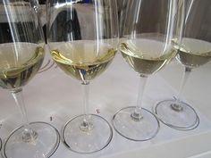 Selección de vinos blancos durante la cata organizada en la Unión Española de Catadores para UCMgastro. 13-04-2013. Imagen Nuria Blanco (@nuriblan)