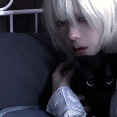 Ulzzang Girl, Cats, Pretty, Animals, Instagram, Gatos, Animales, Animaux, Animal