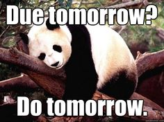 Do tomorrow!  This was SO me in high school and college!