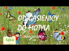 Infant Activities, Diy And Crafts, Education, Film, Children, Youtube, Summer, Speech Language Therapy, Montessori Activities