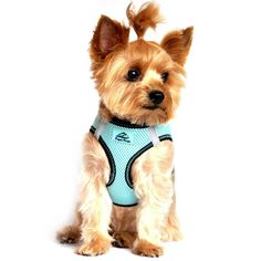 The patent-pending American River Ultra Choke Free Harness by Doggie Design combines the following features to make it the ultimate dog harness: Trachea Safe — Choke Free Design Pulls from the Chest O