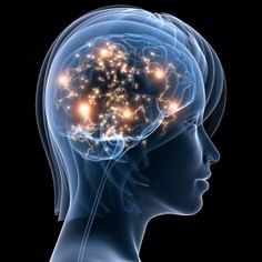 """""""The Human Neocortex is More Complex than a Galaxy"""" article"""