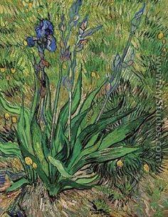 El Iris - Vincent Van Gogh