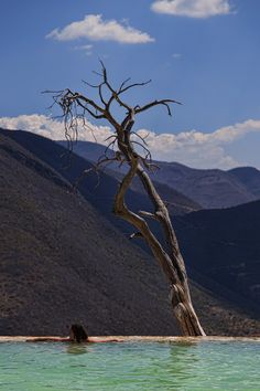 Hierve el Agua. An oasis in the province of Oaxaca, Mexico.