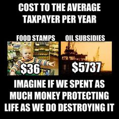 "Corporate Welfare Costs Far More Than Feeding Hungry Children - Who can afford to lose the ""handout"" more? Food Stamps, Political Issues, Political Memes, Environmental Issues, Timeline Photos, Social Justice, Wealth, Religion, Politics"