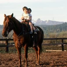 Property Brothers, Jonathan and Drew Scott on a Horse