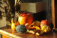 Pikczer For Ticzer: Dynia - Pumpkin decoration