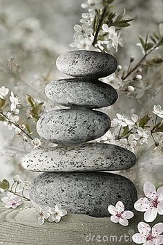 Zen stones and flower blossoms